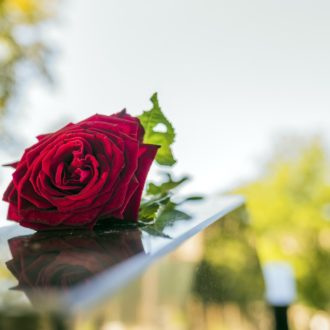 Gravestone with withered red rose during summer day/ Tombstone on graveyard / Sorrow about loss of beloved ones (Gravestone with withered red rose during summer day/ Tombstone on graveyard / Sorrow about loss of beloved ones, ASCII, 112 components, 11